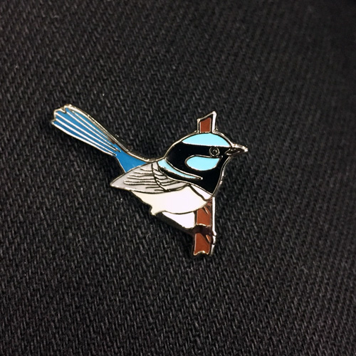 Superb Fairy-wren Pin Badge