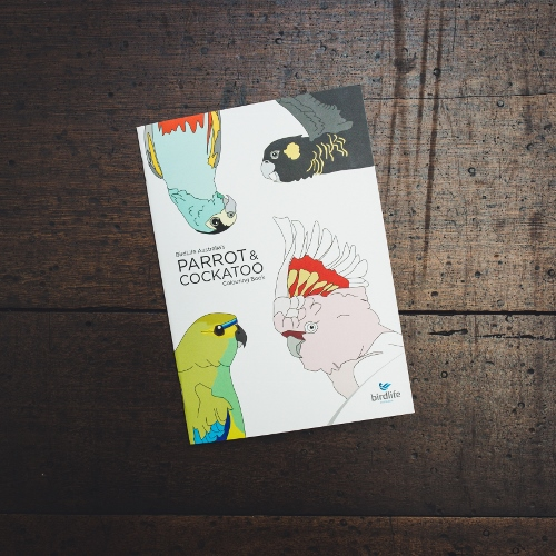 Kids' Colouring Book - Parrot and Cockatoo