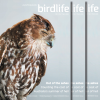 March 2020 BirdLife Australia Magazine