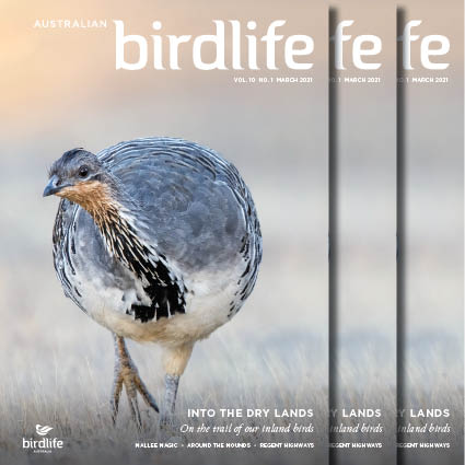 March 2021 cover - Malleefowl